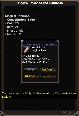 Picture for Evilyn's Bracer of the Elements