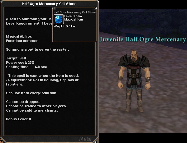 Picture for Half Ogre Mercenary Call Stone