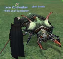 Giant Beetle :: Bestiary :: Dark Age of Camelot :: ZAM