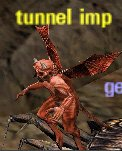 Picture of Tunnel Imp
