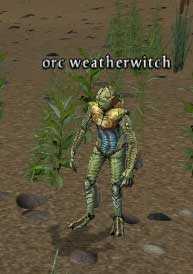 Picture of Orc Weatherwitch