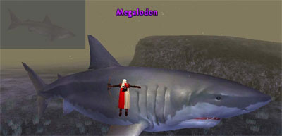 Picture of Megalodon