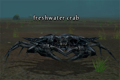 giant freshwater crab - photo #49