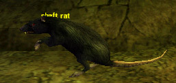 Picture of Shaft Rat