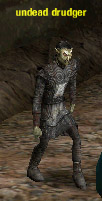 Picture of Undead Drudger