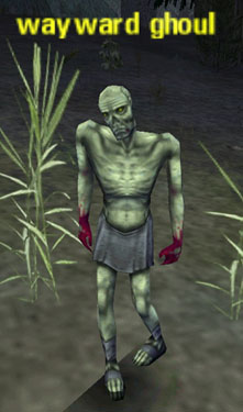Picture of Wayward Ghoul